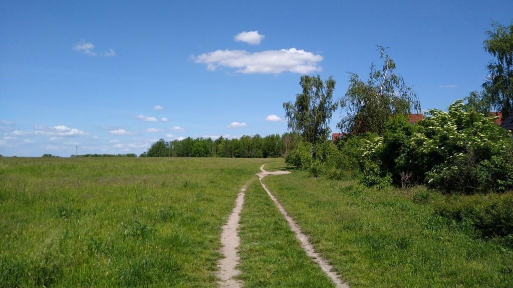 Von Mahlow durch die Diedersdorfer Heide nach Blankenfelde