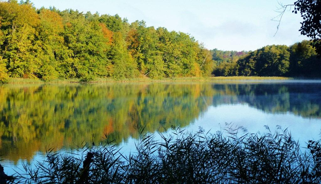 Von Wandlitz über Lanke und Lobetal nach Bernau