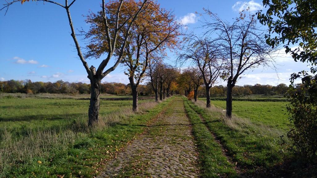 Von Spandau über Gatow nach Kladow (Fähre) / Bhf. Wannsee